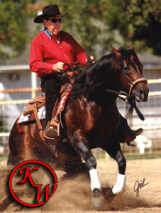 ken wold NRCHA and AQHA Champion